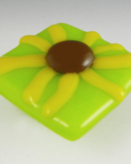 Brown-Eyed Susan lime